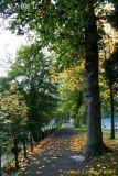 06 Autumn004.JPG