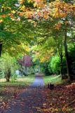 06 Autumn005.JPG