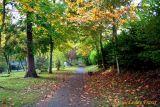 06 Autumn006.JPG