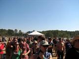 son volt's crowd