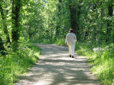Young walker on the towpath
