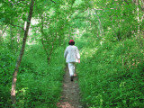 Heading up the Appalachian trail