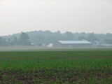 Farm building across the corn field