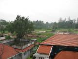 Monsoon greenery beyond homes