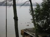 A Foggy Day on Sunset Lake - Sunset Bob