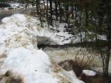 Frohock Brook below the Road