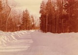 Marlene Drive - Alton Shores - Mid to Late 80s?