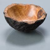 Coral bowl 3.jpg   280