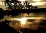 Sun-kissed lake