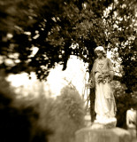 Lady in Sepia