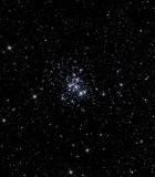 NGC 6231.