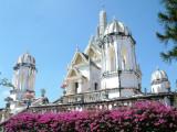 Purple Flowers and White Wat Near Kanchanaburi