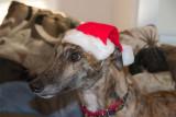Day 7-Santa's little helper