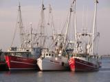 Fishing Boats - Cape May, NJ