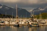 Harbor Evening - Valdez, AK