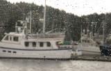 Rainy Day - Juneau, AK
