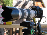 Canon (70-200mm)/2.8 AF EOS IS Zoom