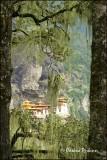 Tiger Nest Monastery 1
