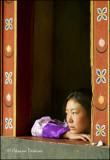 Spectatore, Tshechu Festival