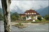 Punakha Dzong 1
