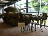 1645 M4A4 Sherman Crab Mk1