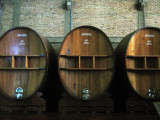 Wine Country: Mendoza