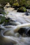 The Little Stream