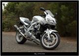 My SV1000s.jpg