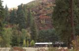Umatilla River Hillside