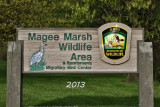 magee_marsh_2013