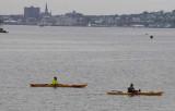 Kayaks on Portland Harbor
