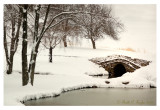 Morning Snowfall at Foxbriar Farm