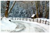 * Winter Morning Along Cuttalossa Road