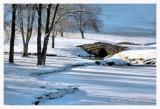 Winter Morning Shadows on Foxbriar Pond