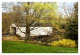 Spring Along Loux Covered Bridge