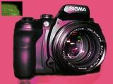 50mm f1.2 - pink