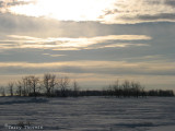 Winter afternoon - St. Albert 1.jpg