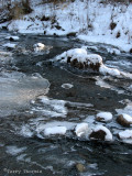 Whitemud Creek new ice 1.jpg