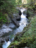 Lower Little Qualicum Falls 9a.jpg