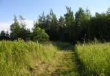 trail to poplar groves