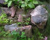 Prospective Rocks in Bev's garden