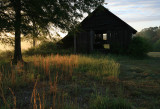Barn-Yard-2WS.jpg
