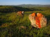 Red-Rocks-4WS.jpg