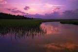 Marsh Fantasy.