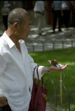 Temple Of Heaven Bird Walking