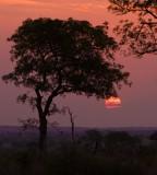Kruger NP Sunset 3