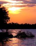 Sunset on the Zambizi River