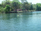 A MANATEE WATCH VOLUNTEER SCRUTINIZES OUR EVERY MOVE FROM A KAYAK