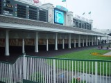 THE FAMOUS PADDOCK AREA WHERE THE HORSES ARE SADDLED BEFORE EACH RACE-NOTICE THE SCREEN AND SCORE BOARDS ABOVE-RACE TRACK SCREEN