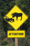 THE ROAD TO GROS MORNE IS  FILLED WITH SIGNS LIKE THIS